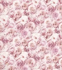 Arthouse Wild Rose Floral Wallpaper ...