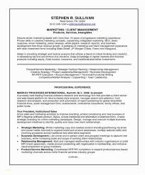 Sample Resume For Team Lead Position Market Analysis Report Template With Fresh 42 Inspirational Sample