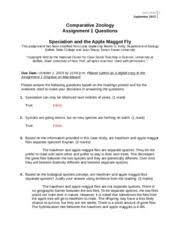 advantages of dieting essay carpooling