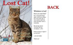 Lost Cat Flyer Find Lost Cat The 1 Lost Found Cat Website In America