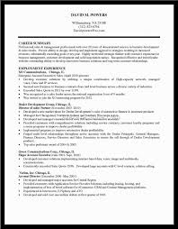 Profile Summary For Sales Resume Profile Summary For Sales Resume ...