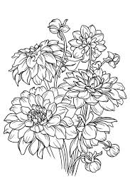 Adult Coloring Book Stress Relieving Flower Patterns