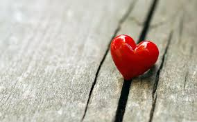 Image result for one heart