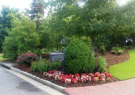 Small Picture Pretty mailbox area with boxwood begonias knock out roses black