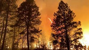 Oregon wildfire forces hundreds from ...