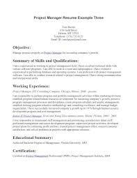resume profile statement example profile example on resume