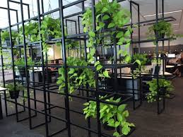 green wall office. The Lush Living Wall: Why Vertical Wall Gardens Are New Privacy Partition Green Office I