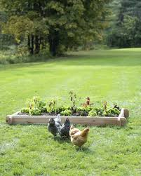 4x8 raised bed vegetable garden layout. 4x8 Raised Garden Bed Farmhouse Vegetable Layout . S