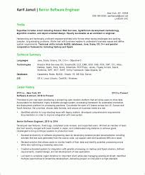 Software Developer Resume Samples Software Developer Free Resume Samples Blue Sky Resumes