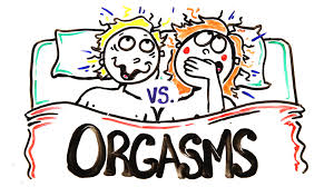 male vs female orgasms which is better male vs female orgasms which is better
