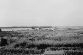 The Simpson Farm » Caribou Harbour: Memory Factory