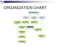 Organizational Chart Of A Coffee Shop Download