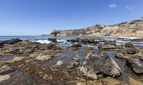 Abalone Cove Beach Rancho Palos Verdes Ca California Beaches