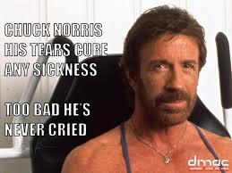 Chuck Norris Quotes Cool 48 Chuck Norris Quotes QuotePrism