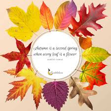 Beautiful Autumn Quotes Best of 24 Beautiful Autumn Quotes That Will Make You Fall In Love With Fall