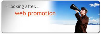 Image result for web promotion