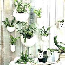 wall mounted planters indoor wall mount planter wall planter indoor pertaining to wall mount planter prepare