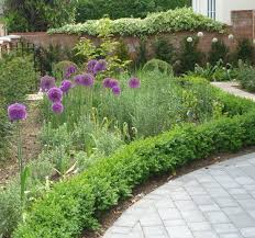 Small Picture Demeter Design Landscape Designer Cambridge and Norfolk