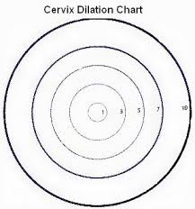 Birth Dilation Chart Is Cervix Dilation An Early Sign Of Labor