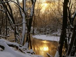 winter nature backgrounds. Modren Nature Harpeth River Winter Sunrise Williamson County In Nature Backgrounds N