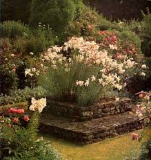 Small Picture Rose Garden Ideas Pictures Perfect Home and Garden Design