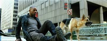 charles poff ph d cvccenglish department unit resources for  i am legend dog