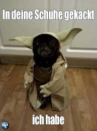 Zitate Yoda Deutsch Sprüche Zitate Leben