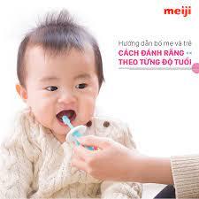 Hướng dẫn bố mẹ và trẻ cách đánh răng theo từng độ tuổi - Meiji