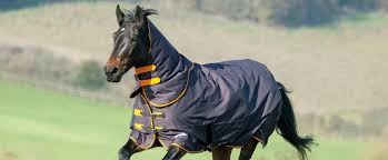 Shires Guide To Turnout Rugs Shires Equestrian Blog