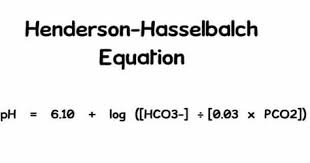 Henderson Hasselbalch Henderson Hasselbalch Equation Respiratory Therapy