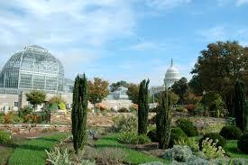 u s botanic garden