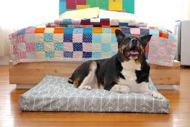 picture of custom dog bed