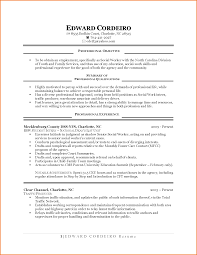 First Job Resume Examples 100 First Time Job Resume Examples Financial Statement Form 20