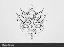 лотос эскизы эскиз лотоса на белом фоне стоковое фото Nookphoto