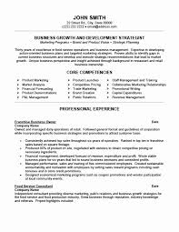 Small Resume Format Small Business Owner Resume Sample How To Put Your Businees On A