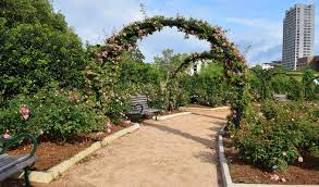 romance hermann park conservancy