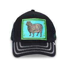 Black Sheep - B2C Catalog Trucker Hat | Goorin Bros. Shop