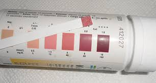 Procedures For Complete Urinalysis Confirmation Testing