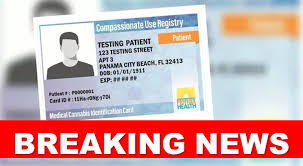 breaking 27 182 patients waiting on mmj id cards florida cans coalition