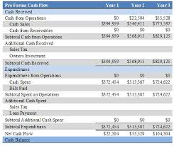 Pro Forma Cash Flow Projections It Business Plan