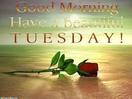 Beautiful Tuesday Quotes Best of Good Morning Have A Beautiful Tuesday Tuesday Tuesday Quotes