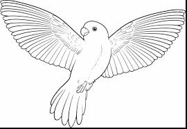 Small Picture Marvelous flying bird drawing with parrot coloring pages