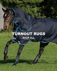 turnout rugs at robinsons