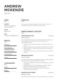 Bartender Resume Job Description Fascinating Bartender Resume Samples Letsdeliverco