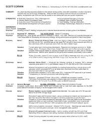 Sample Resume Account Manager Advertising Agency Inspirationa