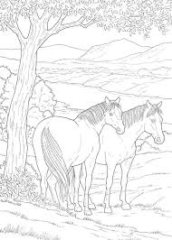 Small Picture Educational Horse Coloring Pages Coloring Pages