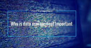 The Importance Of Data Management And What You Should Do