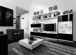 Living Room  Awesome Ceiling Storage Ottoman Rug Living Room Area Black Living Room Rugs
