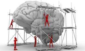 the future of intelligence is the human brain still evolving  the future of intelligence is the human brain still evolving