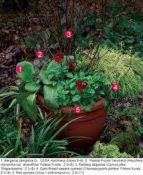 Container Gardening  15 Container Gardens Perfect For The HolidaysContainer Garden Ideas For Fall